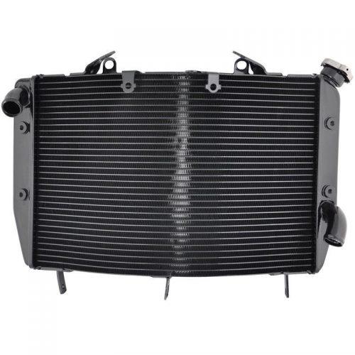 radiator-r6-08-190euro